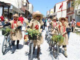 фестиваль трав