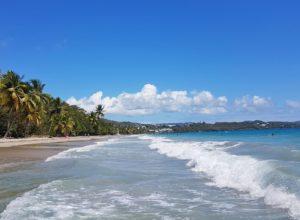 Martinique 33