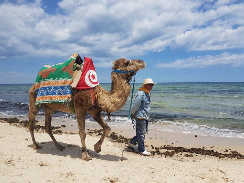 пора открывать Тунис